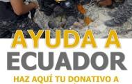 COMUNICADO: CAMPAÑA SOLIDARIDAD CON ECUADOR